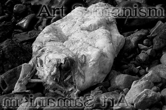Artsauma04