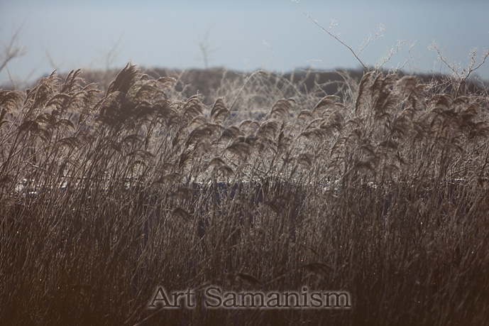 Artsakake_002
