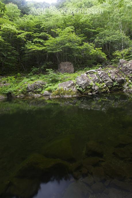 Artsakakunu_001